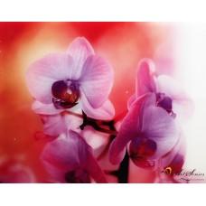 """Картина """"Орхидеи"""" - стъкло"""