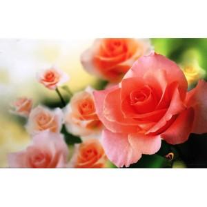 "Картина ""Рози"" - гранитогрес"