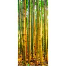 Пано - Бамбук 2