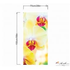 Пано - Орхидея 2
