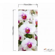 Пано - Орхидея 3