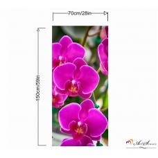 Пано - Орхидея 6