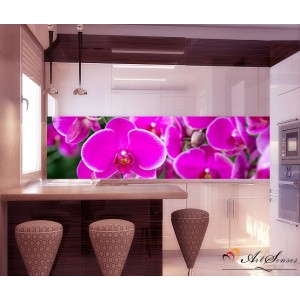 Пано - Орхидеи 2