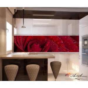 Стикер пано за кухня - Червена роза 3