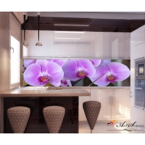 Пано - Орхидеи 3