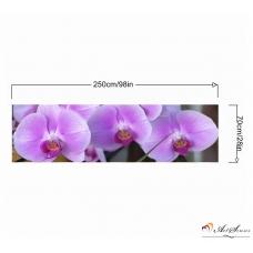 Стикер пано - Орхидеи 3