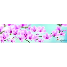 Стикер пано за кухня - Орхидеи 4