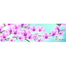 Пано - Орхидеи 4