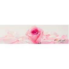 Стикер пано за кухня - Роза