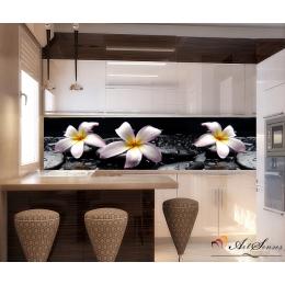 Орхидеи 13