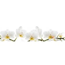 За кухня стикер пано - Орхидеи 7
